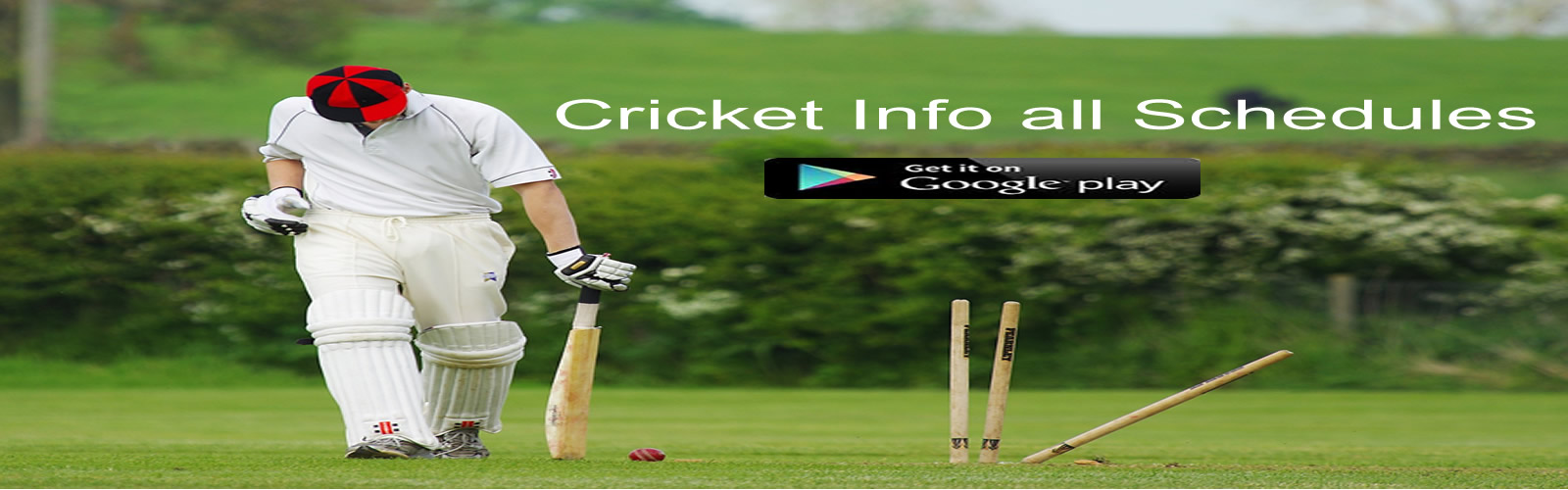 Get the cricket info schedules app now